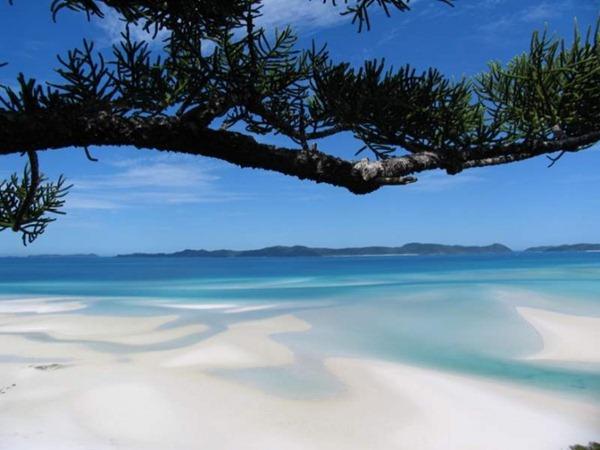 شواطئ الجنة البيضاء في استراليا Whitehaven-Beach-Whi